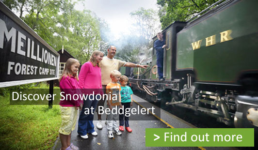 family looking at a steam train at beddgelert cmapsite