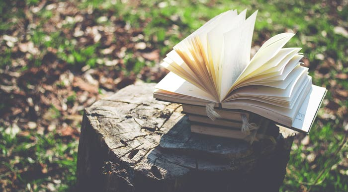 Books-in-the-forest (Shutterstock, ukosia)