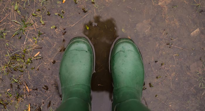 Green Wellies in puddle (Shutterstock, Humpback_Whale)