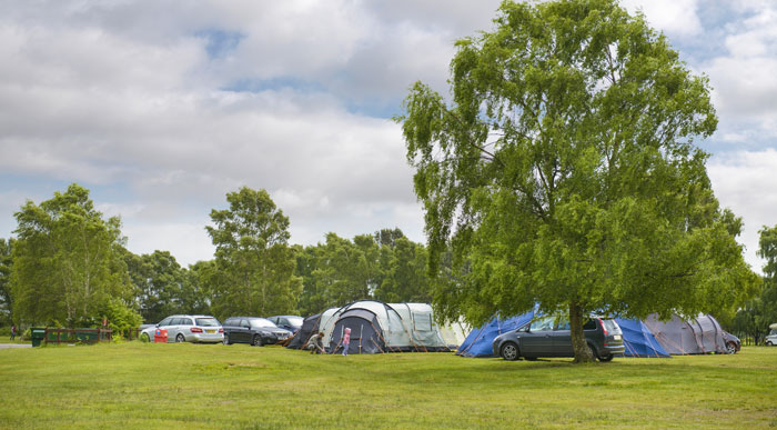 group-camping