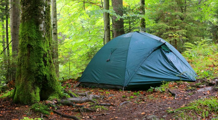 Tent in the forest (Shutterstock, Pavel_Klimenko)