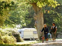 people walking past a caravan in the forest at our English campsite
