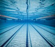 Bangor-Aquatics
