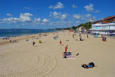Dog Friendly Beaches Bournemouth Area