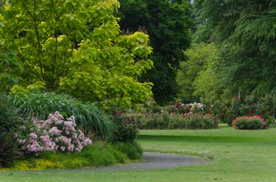 Garden-(Shutterstock,-Jamie