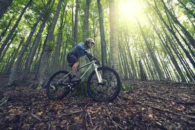 Road 2 Trail (Shutterstock, inigocia)
