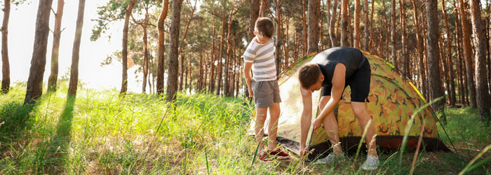 Father and son pitching tent in the forest (Shutterstock, Pixel-Shot)