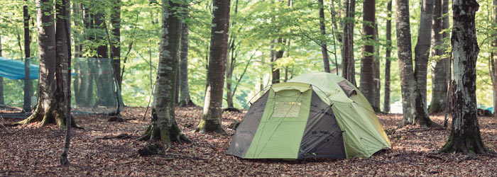 Green tent in the woods (Shutterstock, MAD.vertise)