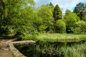 pond at mugdock park (shutterstock, Fiona Galloway)