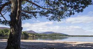 The-stunning-Loch-Morlich