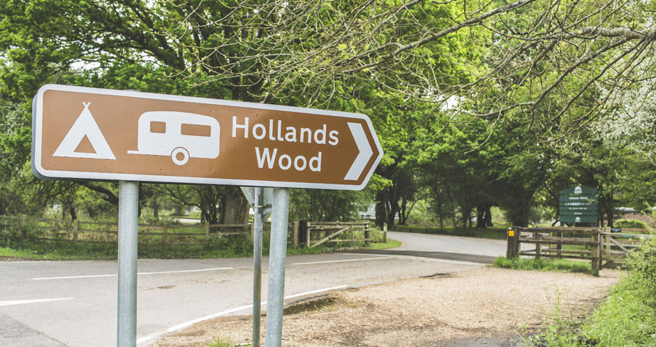 Hollands-Wood-(2)