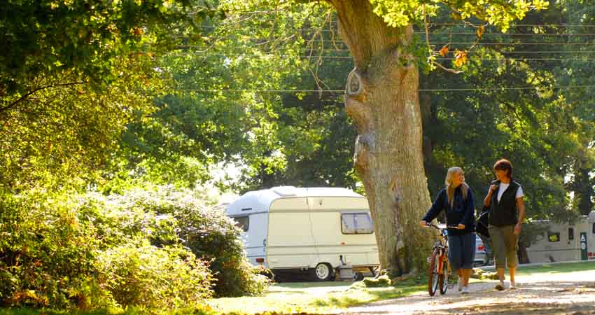 Rooms: Hollands Wood Campsite, New Forest