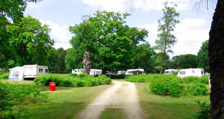 Matley Wood 03