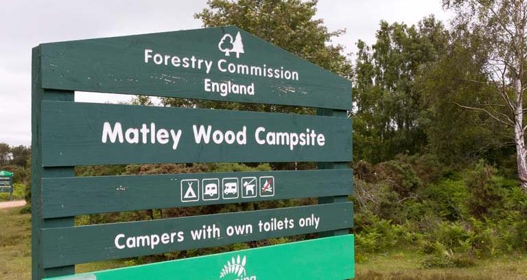 Matley Wood 07