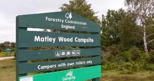 matley-wood-6