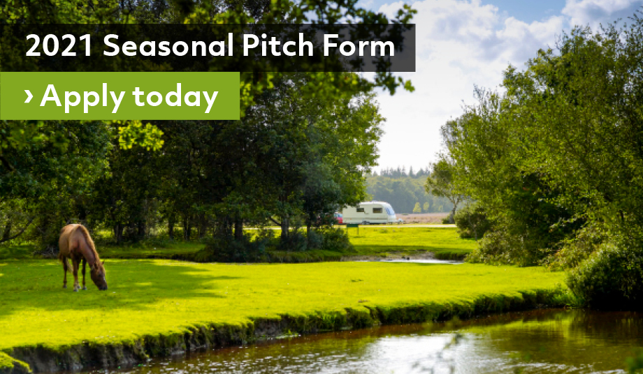 Seasonal Pitches