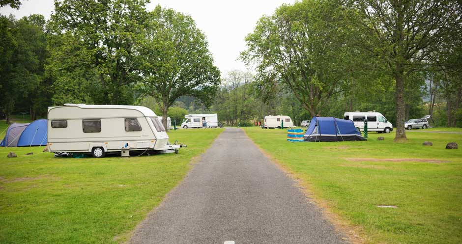 Cobleland-campsite-grass-pitches