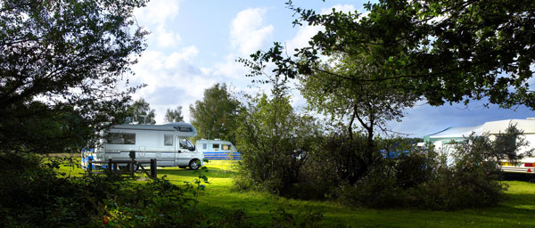 Seasonal-Touring-Pitches-Camping-in-the-Forest