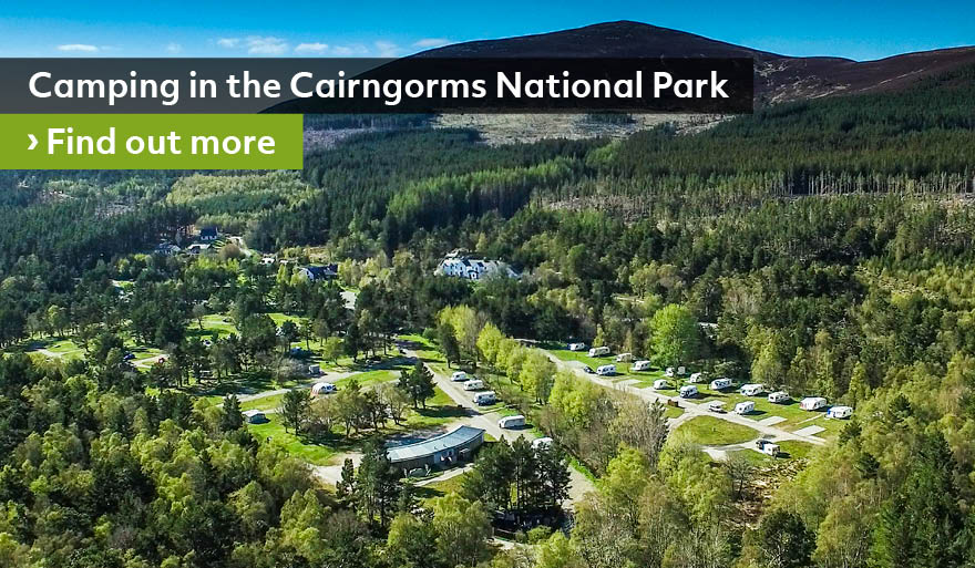21279_CITF_Camping_in_the_Cairngorms_homepage_banner_880x513px