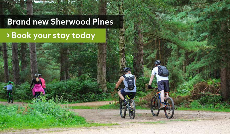 Book-Sherwood-Pines